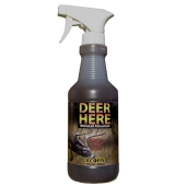 deer here acorn whitetail attractant